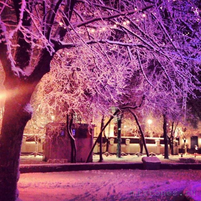 riga zimoi